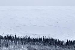 Suomalaisittain mittava lumivyöry Aakenustunturilla 2.2.2015. Kuva: Timo Veijalainen