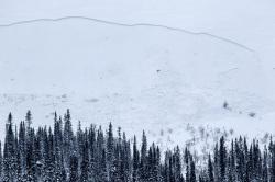 Lumivyöry Aakenuksella 2.2.2015. Kuva: Timo Veijalainen